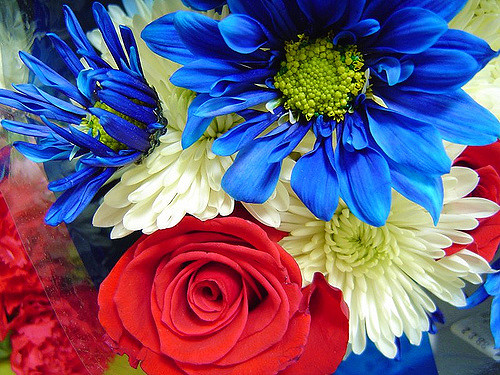Holiday Flowers for Any Occasion