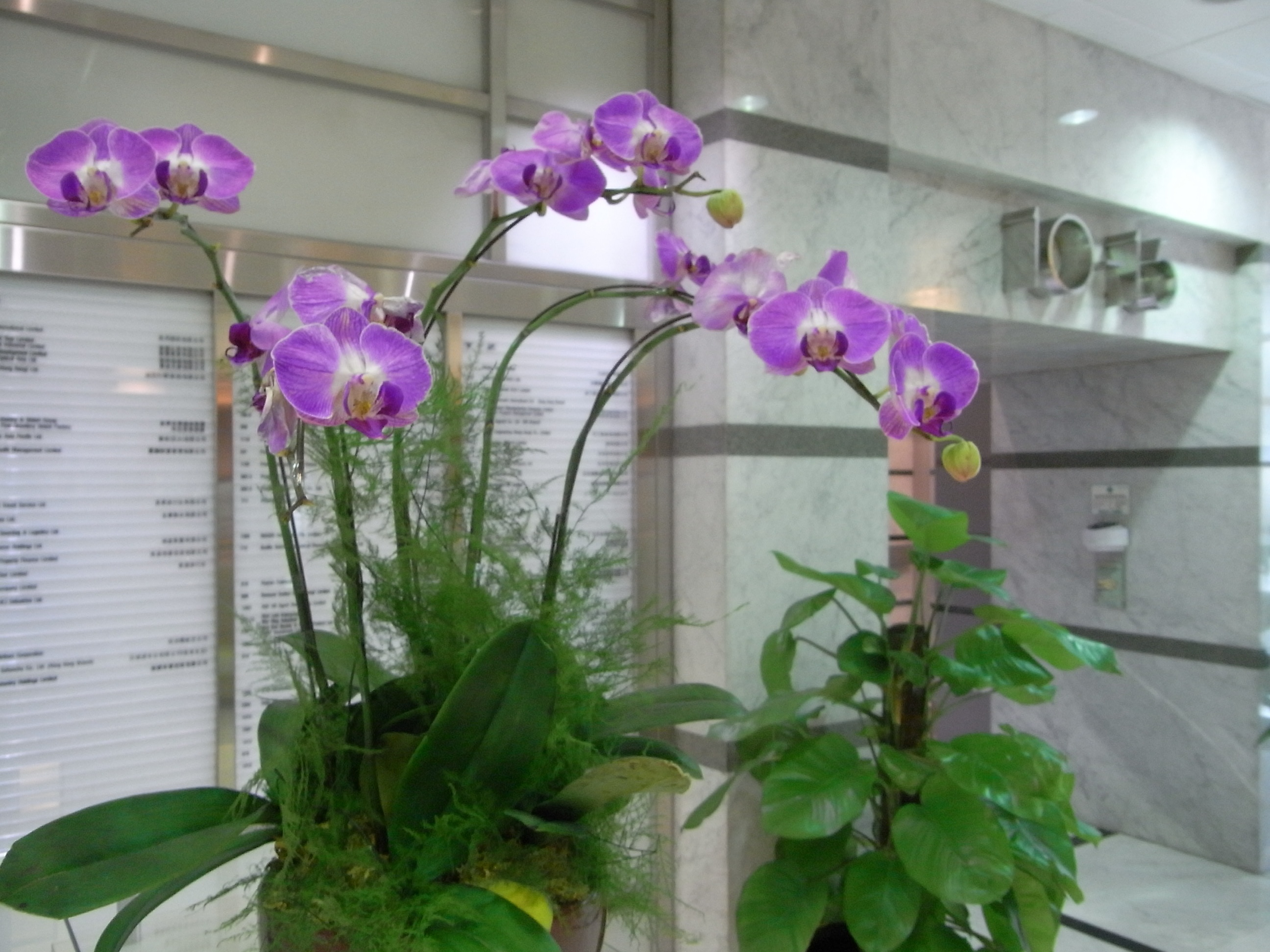 corporate floral design in fairfield county